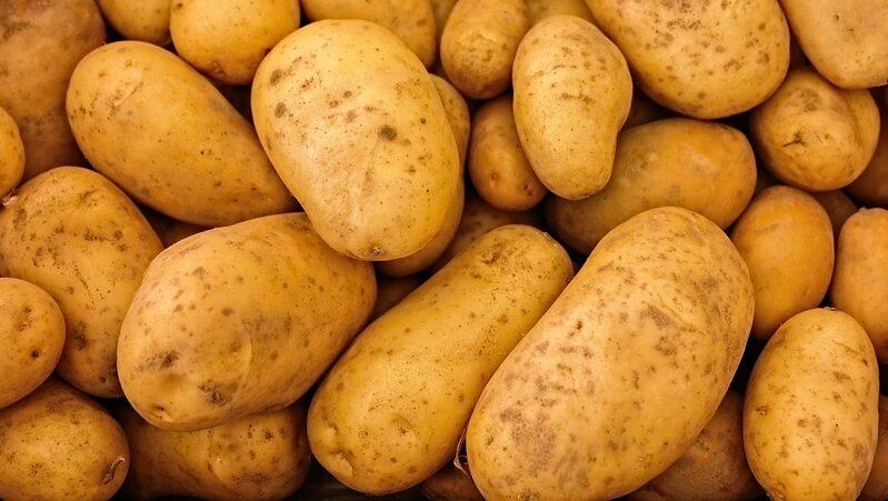 10 Gründe, warum Kartoffeln so wertvoll für deine Gesundheit sind