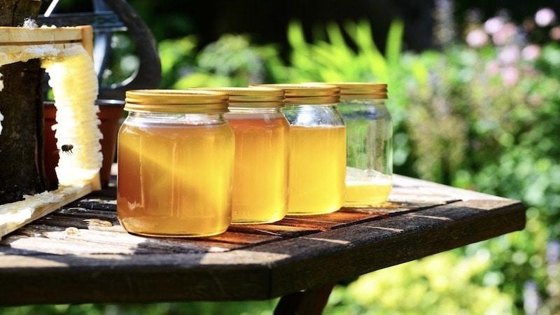 Honig, Bienen