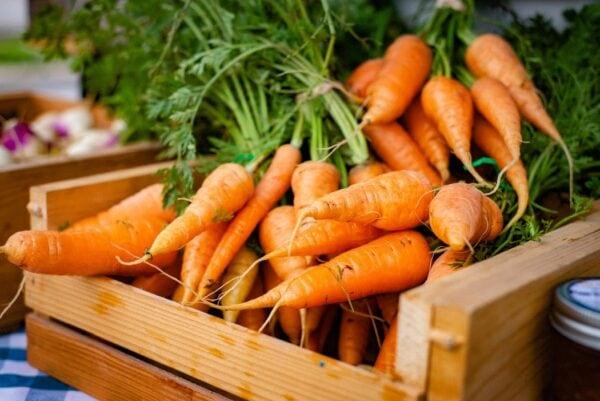 Möhren, Karotten